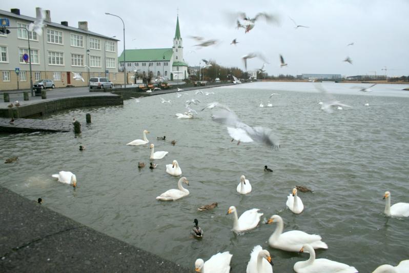 Iceland-106