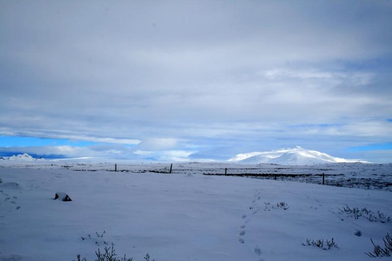 Iceland 1 - Quiero ser como yo, Alba Trujillo